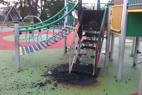 Setka nastolatków pobiła dotkliwie człowieka, niszczyła samochody, zdemolowała park – policja nie interweniowała!